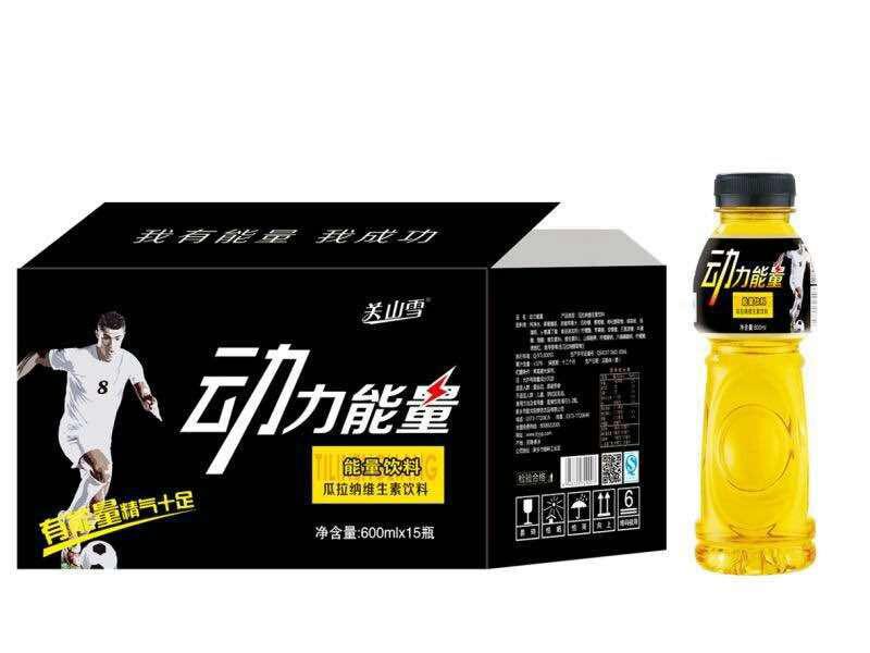 动力能量600MLX15瓶